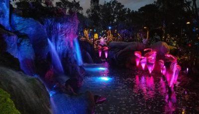 Pandora de nuit