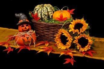 Décoration pour Halloween aux USA