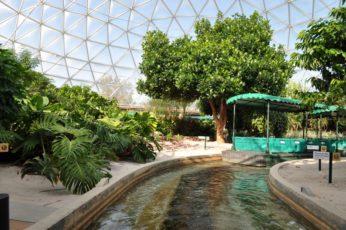 visitez la serre d'epcot a disney world en floride