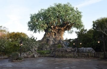 L'arbre de vie de Animal Kingdom en Floride